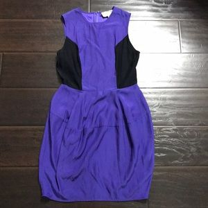 Elizabeth & James 100% Silk Dress sz 4